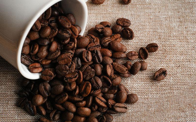 UCC滋賀工場で「春休みこどもコーヒー体験ツアー」を開催!